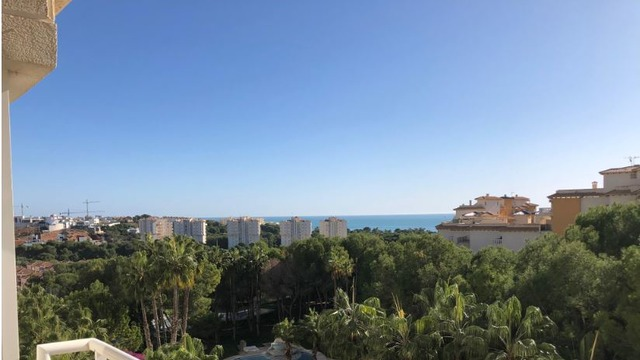 Very nice apartment in Campoamor - 1