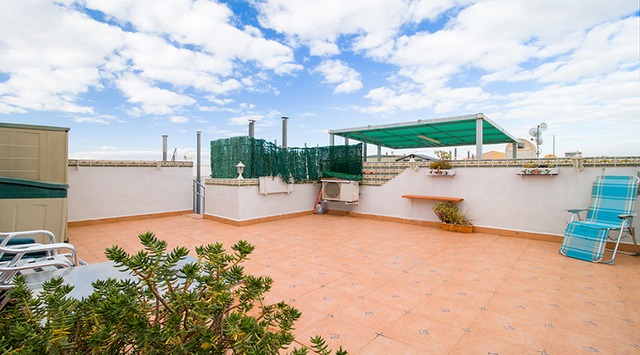 Bungalow in Torrevieja - 19