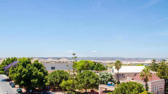 Apartment in Torrevieja - 19