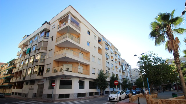 Apartment in Torrevieja - 1